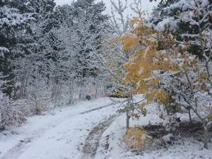 October 6, 2016, first measurable snowfall of season: 2.5 inches